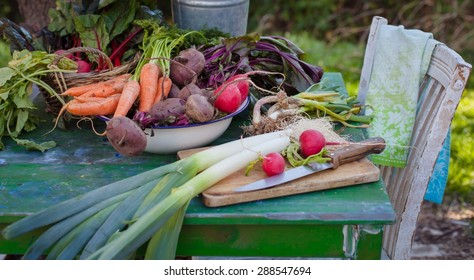 Balanced diet based on raw organic vegetables. Healthy food concept in garden.