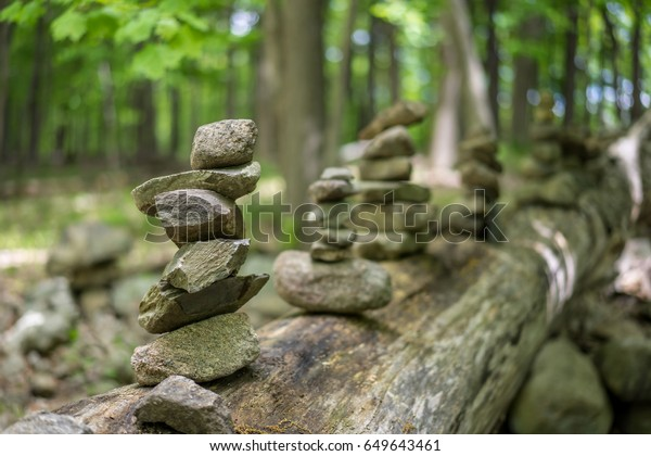 Balanced stone stacks piled on the cut down tree.