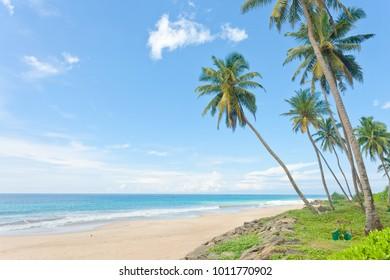 Balapitiya Beach, Sri Lanka - Calming down at the beautiful deserted beach of Balapitiya