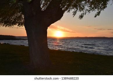Siófok, Balaton parti naplemente, fűzfákkal