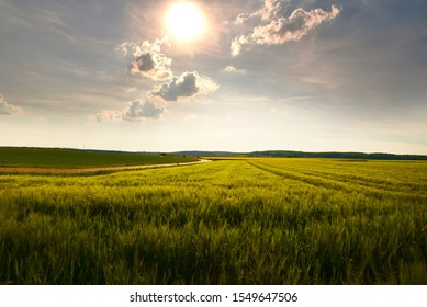 Balay field with afternoon sun on the sky