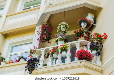 Balcon with beautiful flowers, white house in town