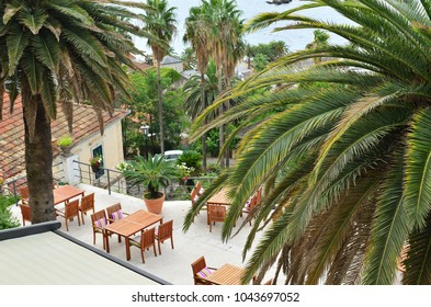 Balcony with lush Mediterranean plants and wooden garden tables and chairs â?? high angle shot