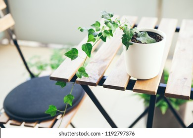 Balcony with a lot of plants. Beautiful new outdoor furniture wooden table and chairs. White pot with green ivy on the table