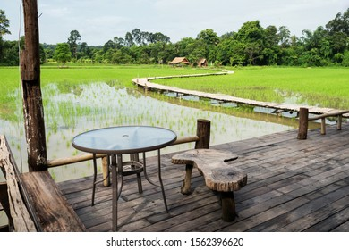 Balcony of table and seats to see paddy rice field farm with curve wooden footpath and farmer hut, Nakhon Nayok, Thailand. Famous scenic travel landmark.