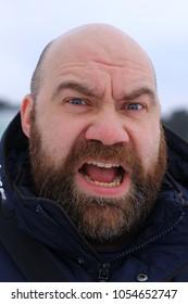 Bald bearded man outdoor portrait.