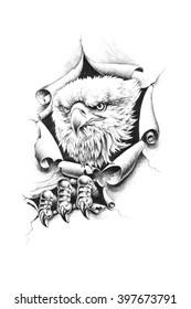Bald eagle breaks through wall paper. Pencil illustration.