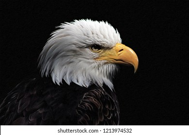 Bald Eagle heraldic animal of the United States of America