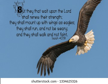 Isaiah 40 High Res Stock Images | Shutterstock
