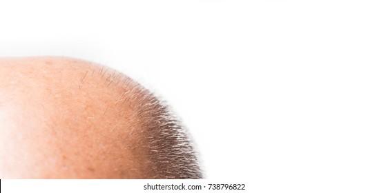 bald man on white background, bald man