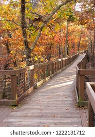 Bald Ridge Boardwalk at Cheaha State Park, in the Autumn
