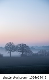 Bald trees in misty winter-landscape at dawn with colorful sky in blue and red, Schleswig-Holstein