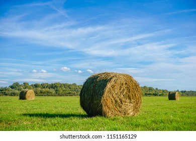 Bale of hay on the fiel of green grass in Albania next to Bashtova Castle in Albania