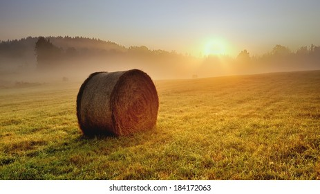Bale of hay on the meadow during the sunrise