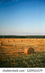 The bale of hay and sun fields.