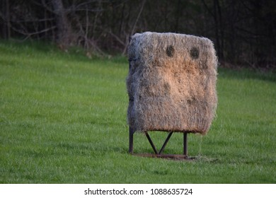 A bale of straw set up for bow and arrow target practice in a Milwaukee county park has the look of a pair of eyes of with dark circles looking off into the distance.
