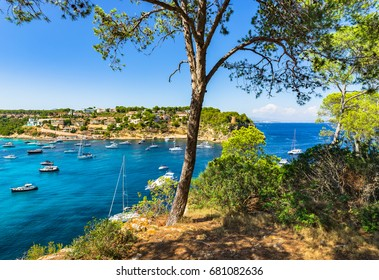 Balearic Islands, Majorca coast scenery, beautiful bay with boats yachts at Portals Vells, Spain Mediterranean Sea, Balearic Islands.