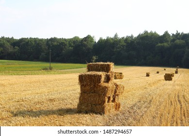 bales of cubic rectangular bales after harvesting wheat, rye, barley against cloudy sky, agricultural agronomy concept