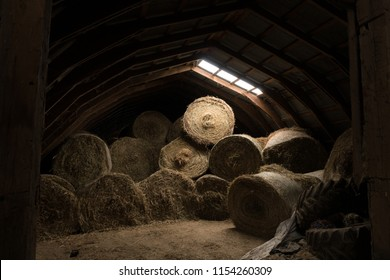 Bales of hay being stored in an old barn