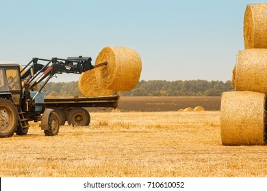 bales of hay in a field with a tractor in the autumn background