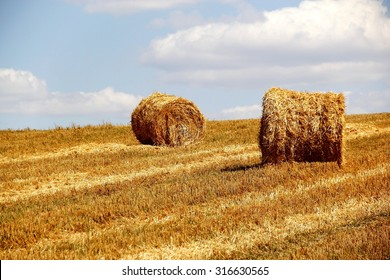 bales of hay on the field /hay rolls in the farm field