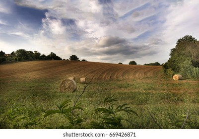 Bales of hay on plowed field