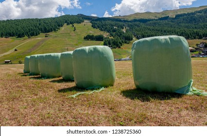 Bales of hay packed in green plastic