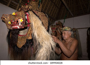 BALI - APRIL 13, 2014: An unidentified master puppeteer prepares the Barong creature to start in a 'Barong' performance in a temple in Bali, Indonesia. The  Barong depicts benevolence overcoming evil.