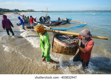 Bali Indonesia - Apr 5, 2016 : Fishermen carry their catch to the shore at Jimbaran village, Bali on Apr 5, 2016 in Bali. Jimbaran village is among famous place to see fisherman life in Bali.
