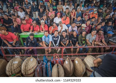 BALI, INDONESIA - AUGUST 25, 2018:  Spectators of a cockfight, two fighting hens, which is an ancient balinese tradition to fight evil spirits