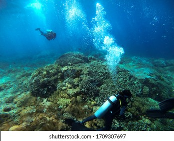 Bali Indonesia - Circa March 2020: Divers exploring coral reefs in Bali, Indonesia