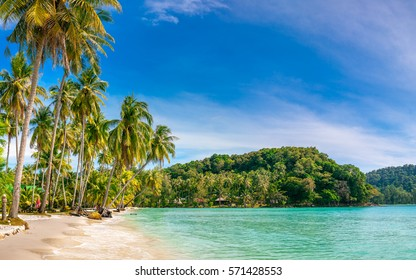 BALI, INDONESIA - DEC 9, 2016 Beautiful beach. View of nice tropical sandy beach with green coconut palms trees around. Holiday and vacation concept. Tropical beach on background blue sky