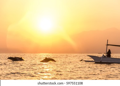 Dolphin Cloud Images Stock Photos Vectors Shutterstock