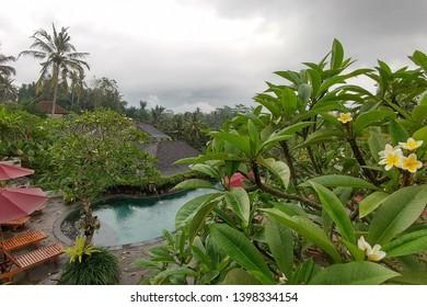 Bali, Indonesia - May 06, 2019: Puri sebali resort. Big infinity pool with view on rice terraces and jungles of Ubud