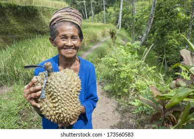 BALI, INDONESIA - MAY 9 : woman sells fruit near a rice terrace May 9 2012 in Bali. Balinese people always look happy no matter how hard they work and little they earn for living.
