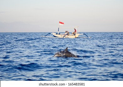 BALI, INDONESIA - OCT 16: Many tourists looking for dolphins at Lovina beach on October 16, 2013 in Bali, Indonesia. Popular activities for visitors include early-morning boat trips to see dolphins.