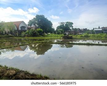 Bali Island in Indonesia