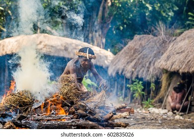 BALIEM VALLEY, WEST PAPUA, INDONESIA, MAY 16th, 2016: Dugum Dani tribe village. Unidentified man of Dugum Dani tribe cooks food and uses an earth oven method of cooking pig. 16, May 2016. West Indonesia.