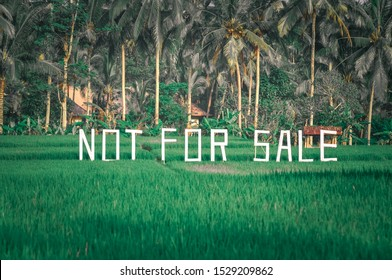 BALI/INDONESIA - FEB 19, 2011: This  eye catchy 'Not For Sale' signage is located at the middle of one paddy field in Bali. This is to inform all passer by that the land is not for sales.