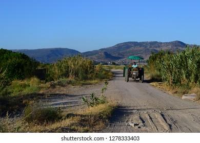 Balikesir, Ayvalik / Turkey - august 4 2016 : tractor men ayvalik turkey