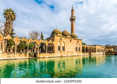 Balikligol ( fish lake ) in Sanliurfa City of Turkey