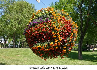 A ball of flowers in air