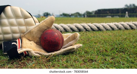 ball and glove of Cricket