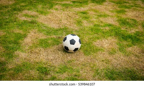 Ball on lawn, Ball at middle field