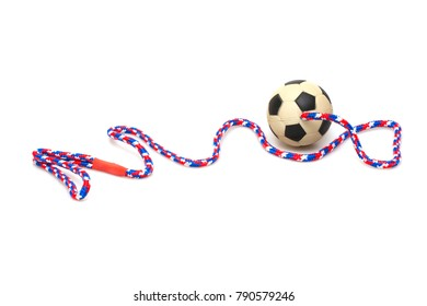 The ball for play with dog isolated on white background