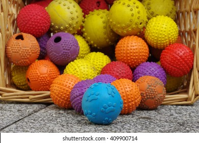 ball toy for dogs wicker basket group objects