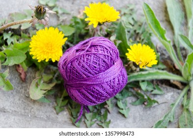 Ball of violet yarn on green leaves and yellow dandelion