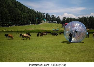 Ball Zorbing in Khajjiar, Dalhousie