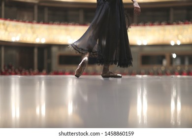 Ballerina in pointe and black transparent dress on the theater stage