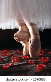 Ballet Shoes on Rose Petals